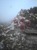 初雪☆つづき