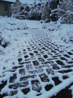 初雪☆その3
