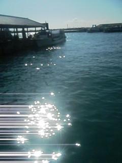石垣島です☆