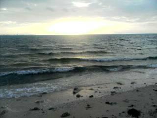 朝の海より。
